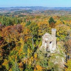 Ruiny Zamku Księcia Henryka