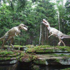 Dino Theme Park