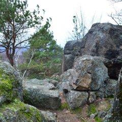 Góra Witosza w Staniszowie
