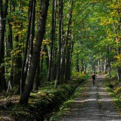 Pasmo rowerowe Singletrack - Olbrzymy