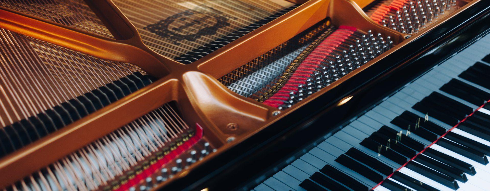 I Międzynarodowy V Ogólnopolski Pianistyczny Konkurs Chopinowski w Turznie 08-11.03.2019 r., Turzno International Chopin Piano Competition, March 8-11, 2019