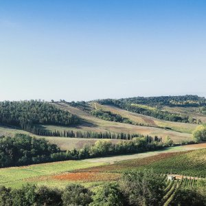 Tuscany <br> Wine & Friends Tour 2019