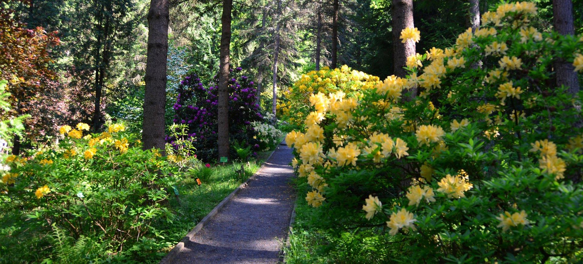 Arboretum w Lądku Zdroju