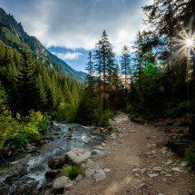 Dolina Zimnika