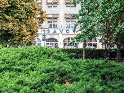 SAVOY we Wrocławiu