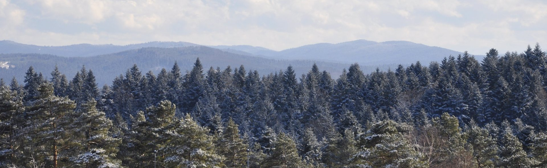 Зима наступила в Арламове!