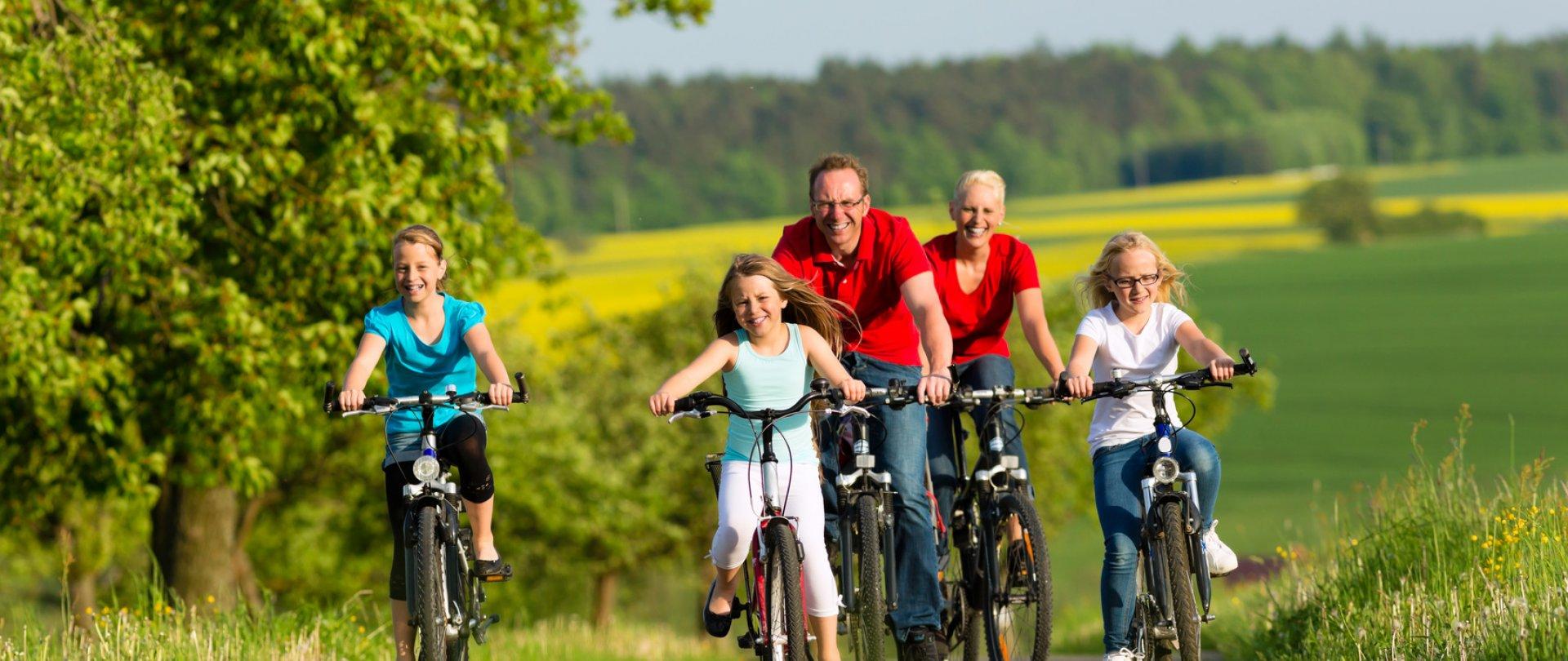 Puszcza Białowieska - wypożyczalnia rowerów