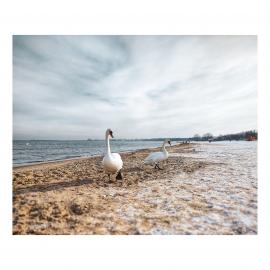Vinter Gdansk strand