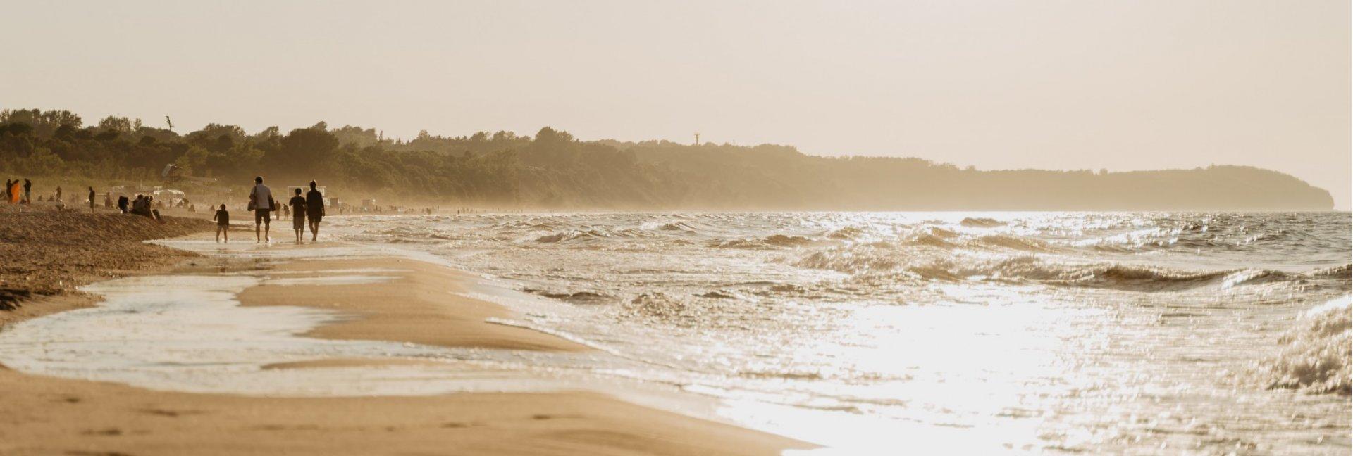 Symbioza - Raport zrównoważonego rozwoju Gwiazdy Morza