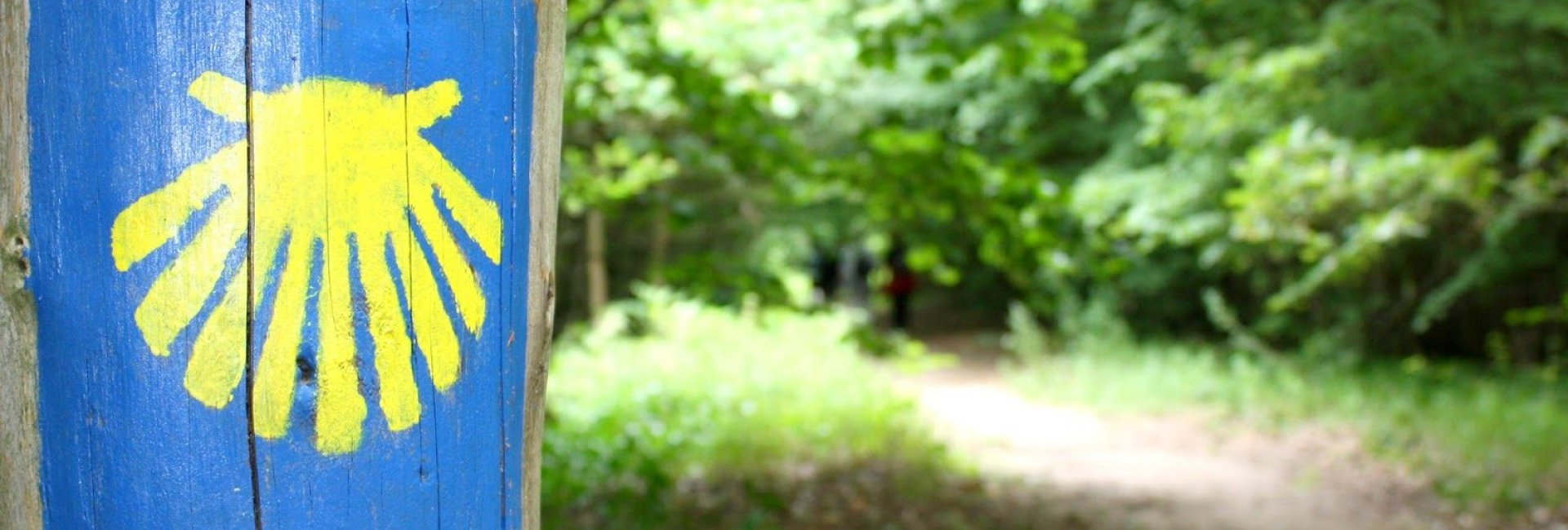 Walking trail - St. James