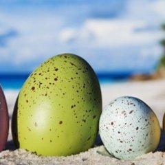 Spędź Święta Wielkanocne w Largo