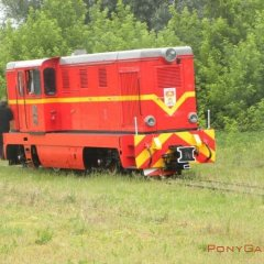 Vistula River Narrow-Gauge Railway Tour