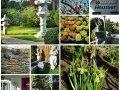 trivago stellt Gartenhotels vor