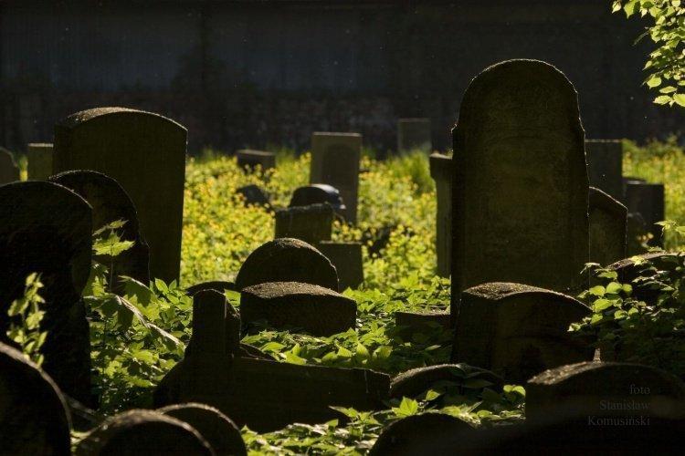 Lato/CmentarzydowskiCCRW_5979_s.jpg