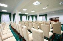 Sala zielona 100 m2